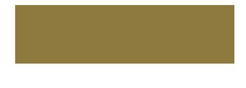 Čebula media logo